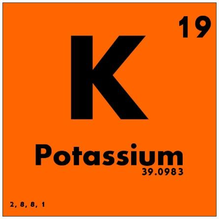 Kidney Disease and Potassium