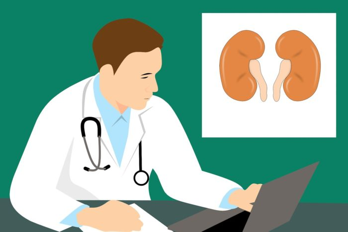 Top Ten List for Thriving with Chronic Kidney Disease